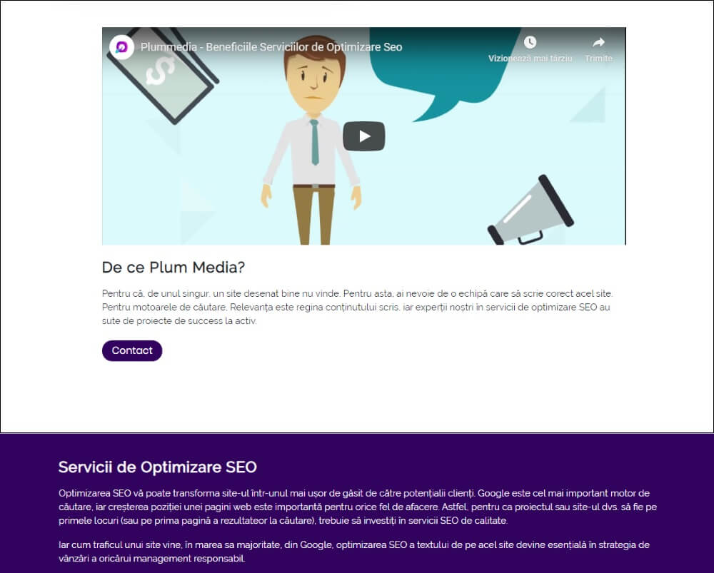 optimizare-seo-plummedia